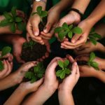 Leveraging Relationships to Add Value to Members' Philanthropic Goals