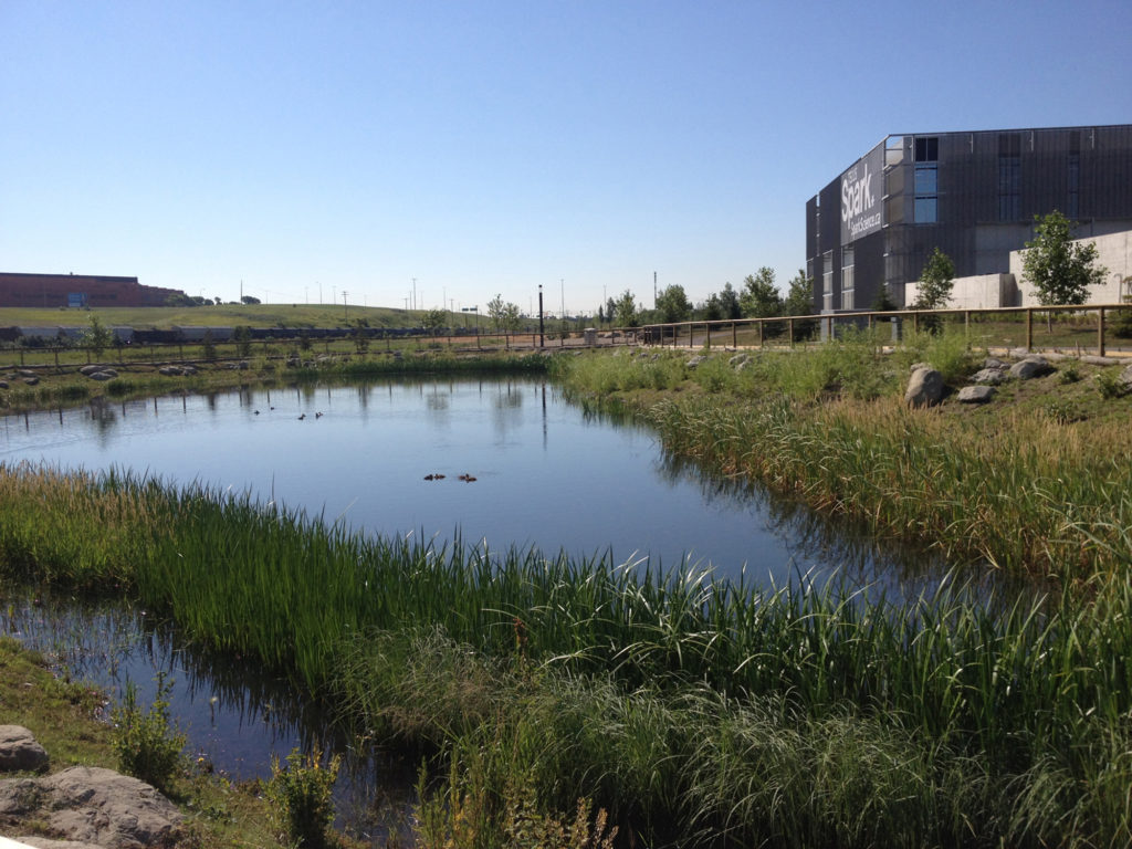 Alberta Association Of Landscape Architects Spark Building and lake